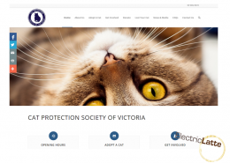cat-protection-victoria