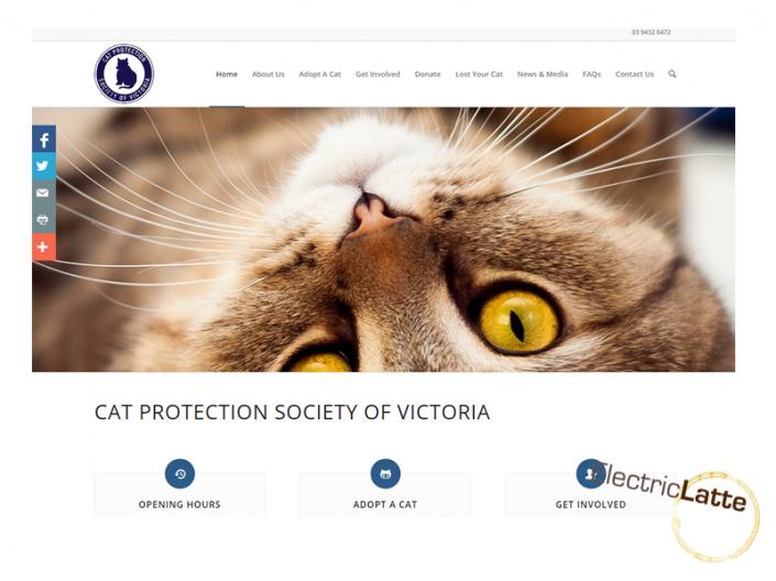cat-protection-victoria